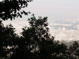 Apsan Mountain 4