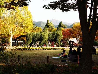 Daegu Park 6