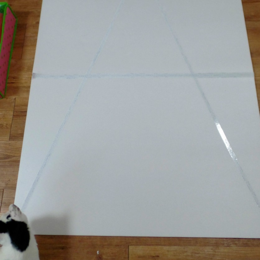 Tape together two foamboards on both sides and make a large triangle with white or clear tape. Do everything under the direction of the kitty inspector.