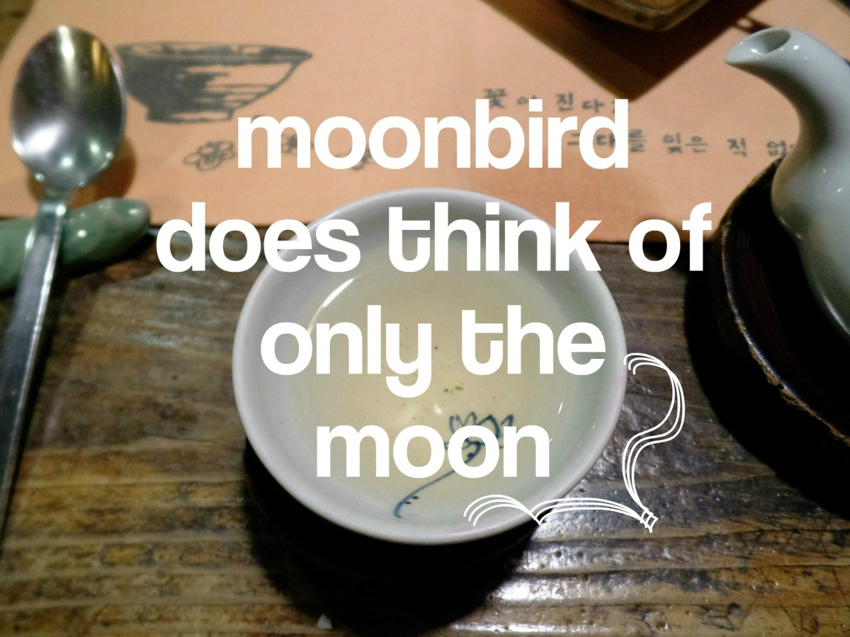 Moonbird | Cafe