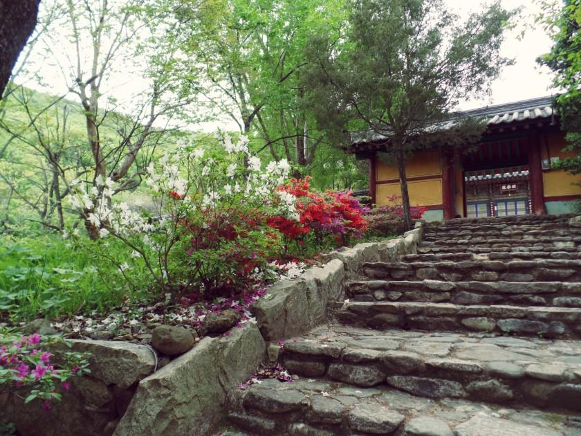 Temple Entrance 4