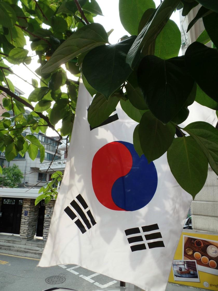 Gongboocha 9