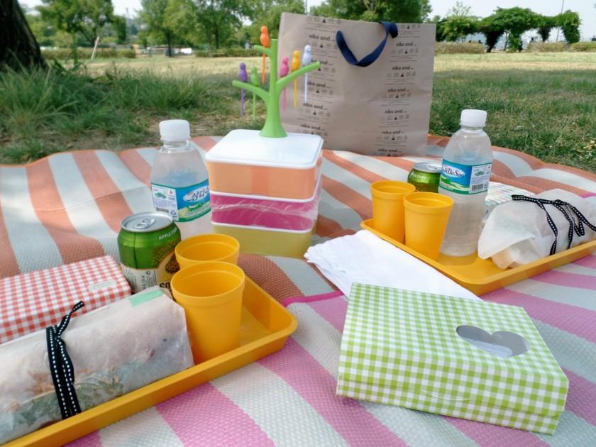 han river picnic 2