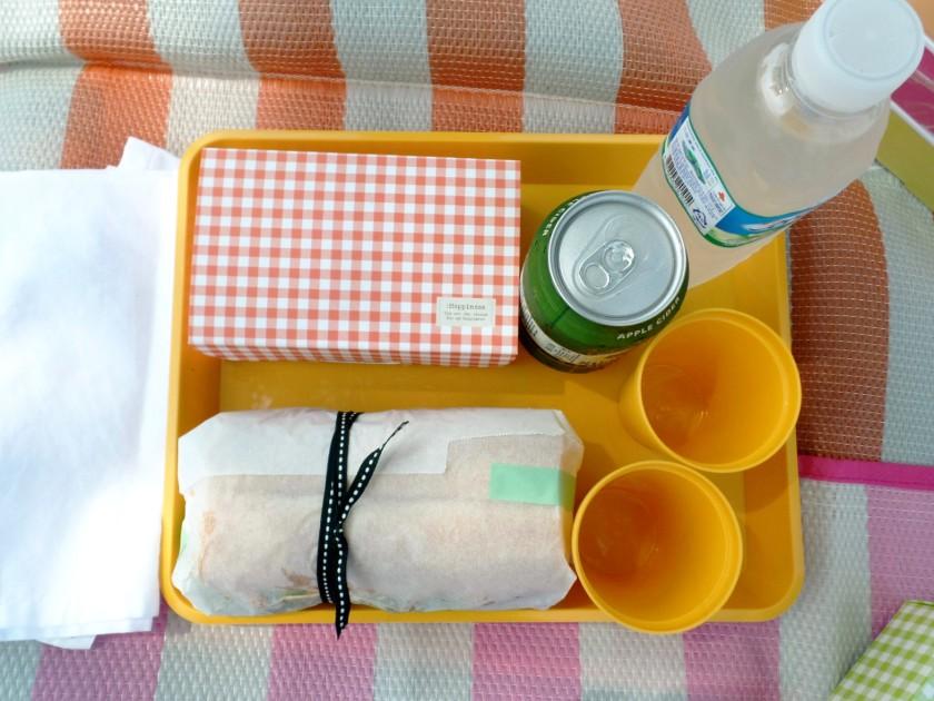 han river picnic 3