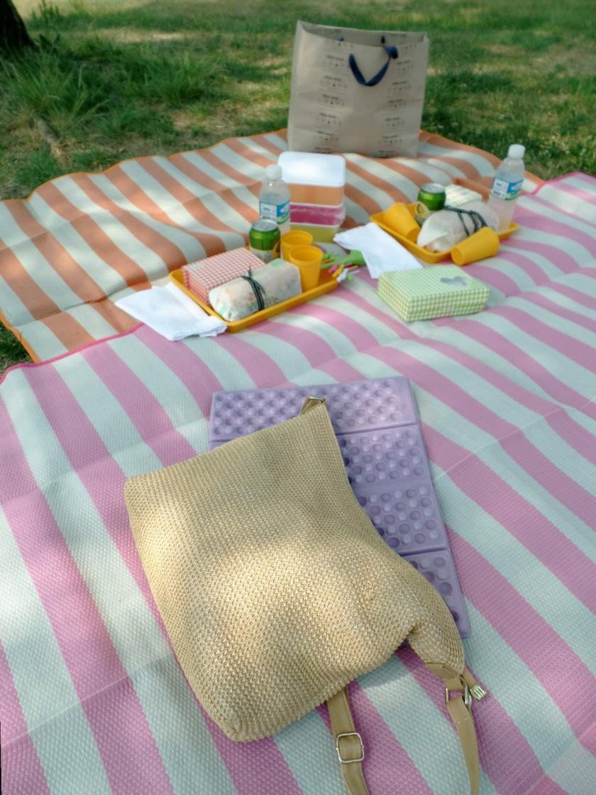 han river picnic