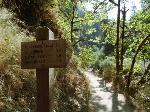 Hiking Portland Eagle Creek 2