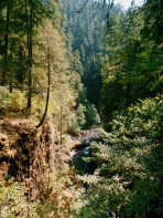 Portland Eagle Creek Hiking