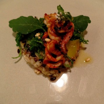 autumn grain & vegetable salad, burata cheese and seafood