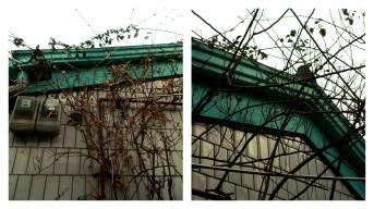 Ikseondong Seoul Hanok Village 017