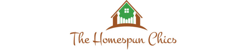 cropped-HomeSpunChics-Header