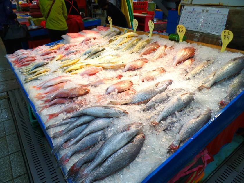 jagalchi-fish-market-007