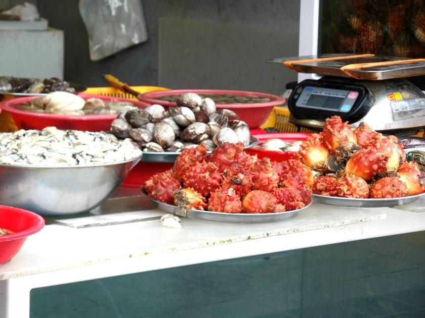 jagalchi-fish-market-027
